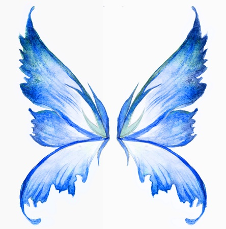 blue fairy wings watercolor hand draw painting