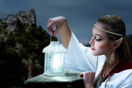 an elf princess   holding lantern night scene photo