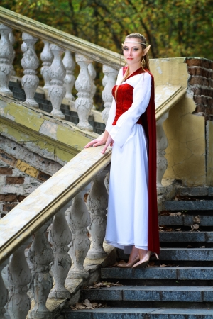 an elf princess standing on the stairs in old castle photo