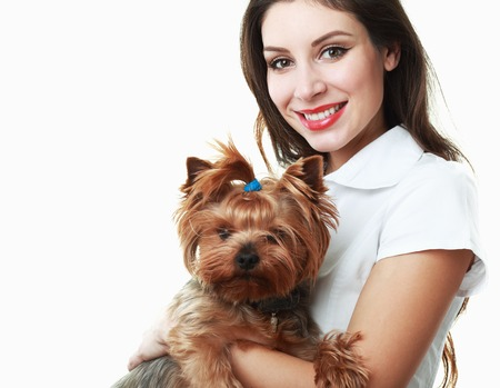 yorkie: woman veterinarian holding a puppy - Yorkshire Terrier