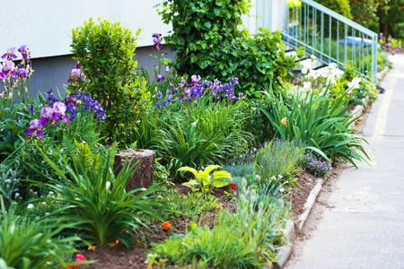 landscaped garden: Lush landscaped garden with flowerbed and colorful plants near modern apartment building