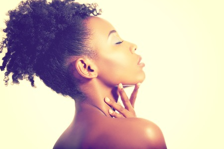 modelos posando: Negro mujer hermosa que presenta en un estudio de la manera de tonificación retro. Foto de archivo