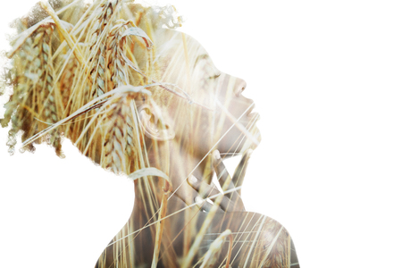 Double exposure portrait of attractive african american woman combined with photograph of ear of wheat