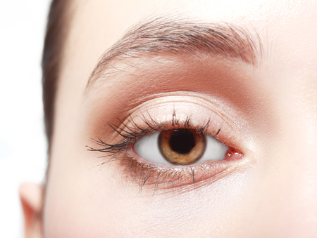 woman eyeball: close up of womans brown eye with false eye lashes