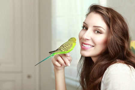 half length portrait: half length portrait of beautiful young woman with parrot on her hand