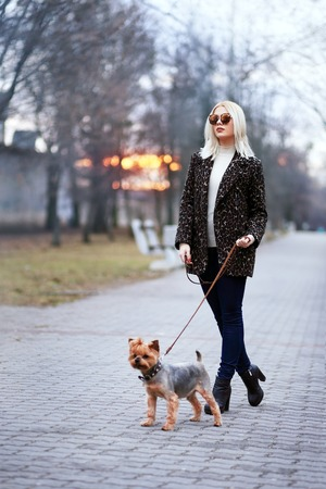 warm jacket: Beautiful young woman walking down the street with yorkshire terrier dog, wearing warm jacket Stock Photo