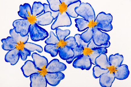 flax: The flax flower drawn with a water color