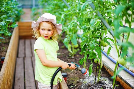 glasshouse: Gardening - little girl watering plants in glasshouse