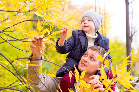 collect: Man With Young Son On Shoulders Autumn Park collect leaf from the tree