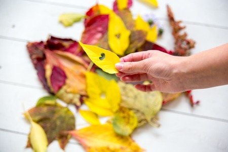 Autumn composition made of fallen leaves on white background