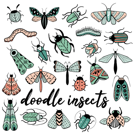 Big colorful hand drawn doodle set with insects. Beetle, butterfly, moth, worm collection in outline style. Isolated on white. Black and white illustration