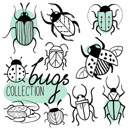 Set of hand drawn insects. Beetles collection in outline stile. Isolated. Free hand doodle bugs. Black and white. Small Animals Sketch Vector Illustration