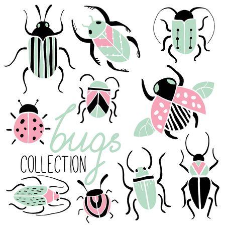 Set of hand drawn colorful insects. Beetles collection in flat style. Isolated on white. Free hand doodle bugs. Small Animals Vector Illustration Ilustracja
