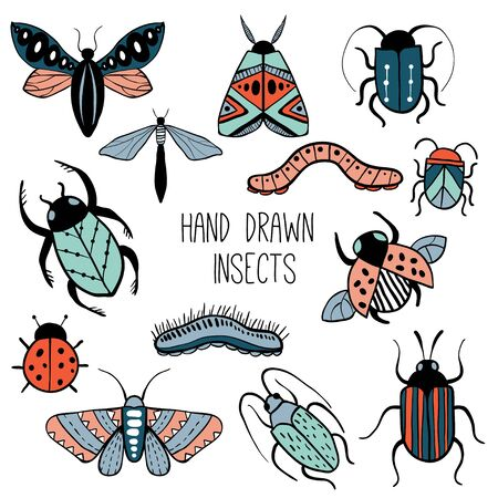 Set of colorful hand drawn insects. Beetle, butterfly, moth collection. Isolated on white. Hand drawn doodle vector set.