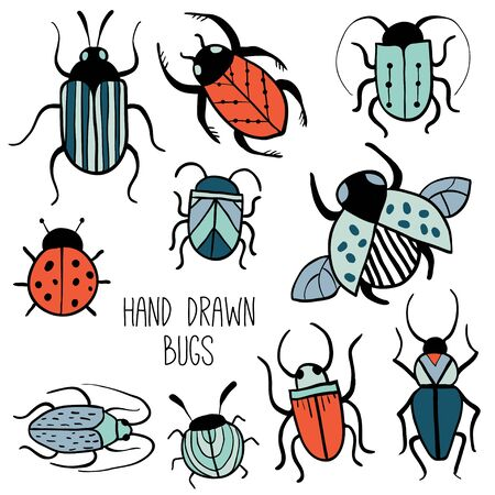 Set of hand drawn insects. Beetles collection in outline style. Isolated on white