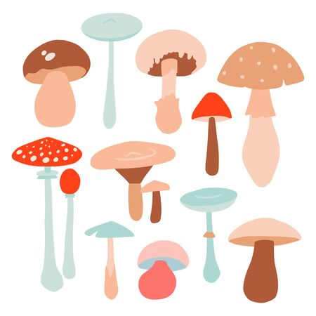 Set with mushrooms template isolated on white. Flat style nature, colorful doodle collection. Hand drawn autumn illustration in vector. Forest plants Illustration