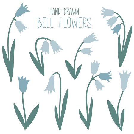 Floral simple set with bell flowers. Spring or summer graphic design. Blue flower vector collection. Hand drawn modern and original elements. Garden. Botany illustration  イラスト・ベクター素材