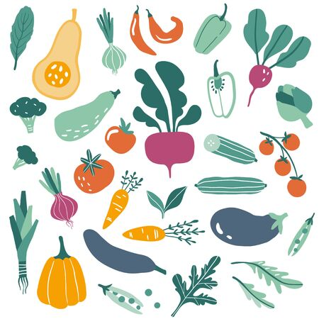 Big set with hand drawn colorful doodle vegetables and greens. Sketch style vector collection. Flat icons: pumpkin, tomato, onion, cucumber. Vegetarian healthy food. Vegan, farm, organic, natural Illustration