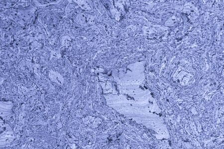 Cork tree background.blue tinted. Abstract background. natural wood Stockfoto