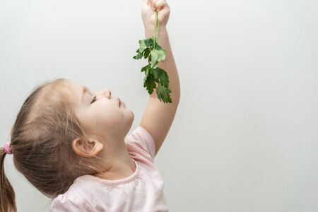 a three-year-old girl holds a sprig of parsley on an outstretched hand and looks at it, profile view. large copy space