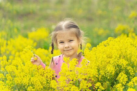little pretty girl 4 years old in a thicket of yellow spring flowers. yellow background Stock fotó