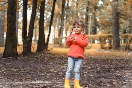 portrait of a beautiful little girl 4 years old in a red sweater in autumn.