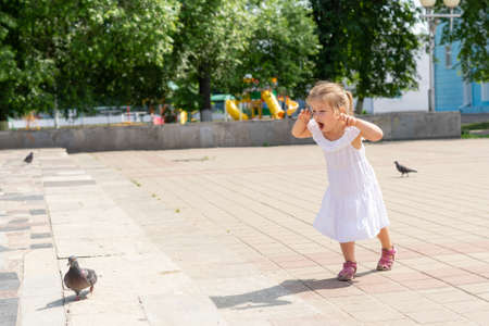 a child in a white dress runs after a pigeon in the park on a summer day