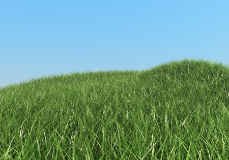 Green grass hills summer background  photo