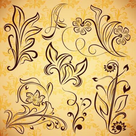 Floral vintage design elements. Vector