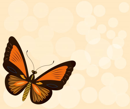 beauty spot: Beige background with butterfly and copy space  Illustration