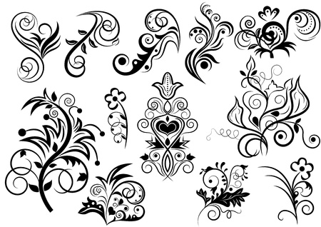 Black and white floral design elements. Stock Vector - 14908041