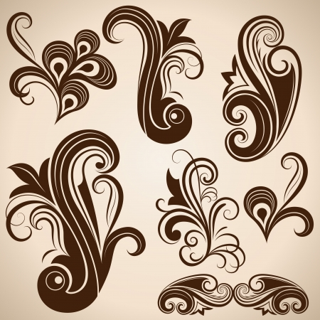 ornamental scroll: Set of vintage floral design elements vector illustration
