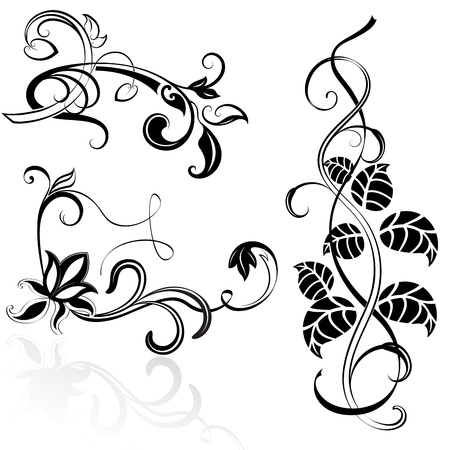 Black and white floral design elements  Vector