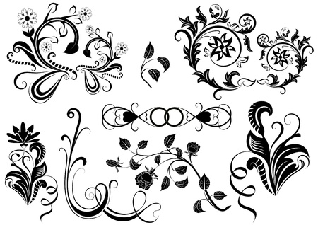 Black and white  floral design elements. Vector
