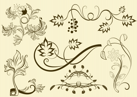 twirls: Floral  elements isolated on bright background.
