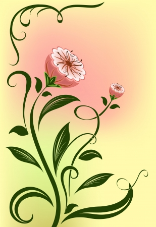 Abstract  flower isolated on color background   Vector