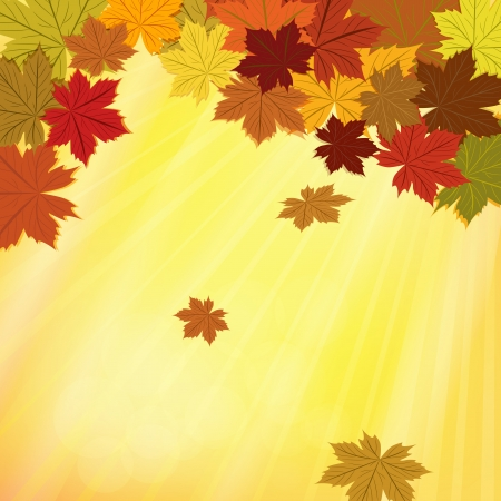 Colorful fall background with maple leaves Stock Vector - 15691333