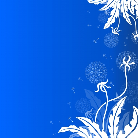 flimsy: Abstract dandelion background with blue copy space   Illustration