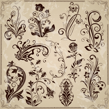 Floral vintage design elements isolated on beige background   Vector