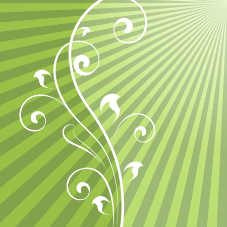 Abstract green rays background with vertical floral dividing element  Vector