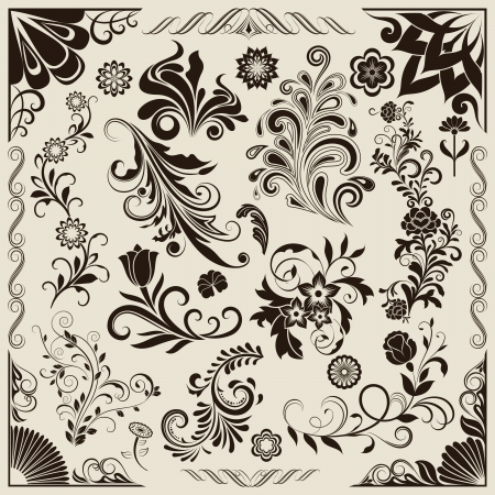 Floral vintage vector design elements isolated on beige background  Set 25  Vector