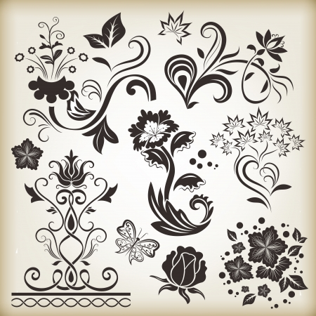 brown swirl: Floral vintage vector design elements isolated on beige background