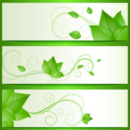 green leaves: Abstract green leaves eco vector banners.