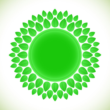 Green leaves sun shape in white background. Natural product emblem. Vector illustration.