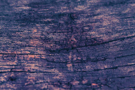 Vintage old wood background texture. Selective focus.Workpiece for design.