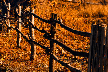 old broken wooden fence in an abandoned village in autumn. Nostalgia for childhood in the countryside