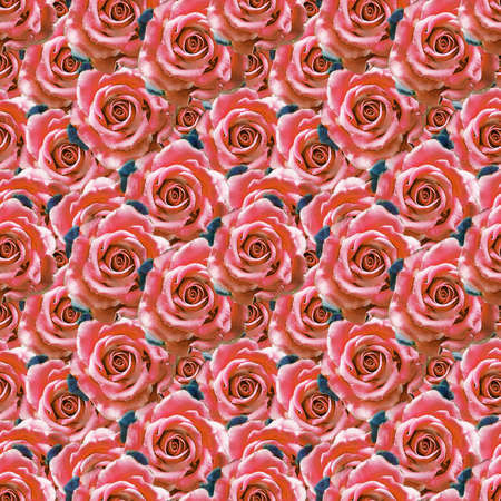 Beautiful seamless pattern in vintage style with watercolor rose flowers. Floral seamless background.