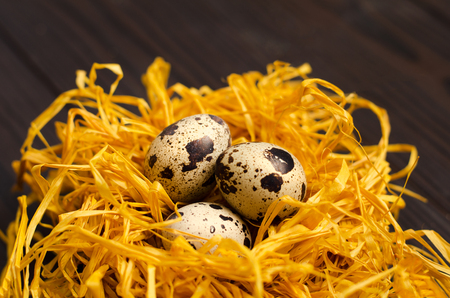 Quail eggs in the decorative nest on dark wooden background.