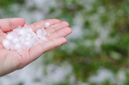 Spring hail in the girls hand Imagens