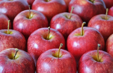 Rows of red juicy apples Stock Photo